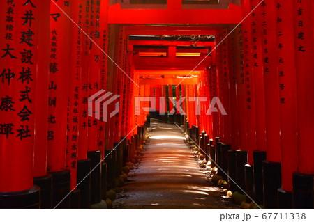 光が差し込み、赤く照る伏見稲荷大社の千本鳥居 67711338