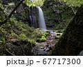 東山大滝 67717300