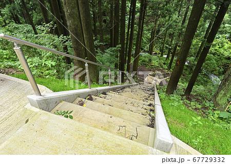 シワガラの滝 新駐車場から遊歩道へ続く階段(兵庫県美方郡) 67729332