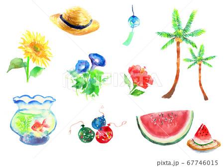 水彩で描いた夏のイラストのセット 67746015