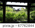 東福寺  新緑  蓮 67762844
