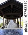 東福寺  新緑  蓮 67762850