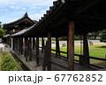 東福寺  新緑  蓮 67762852