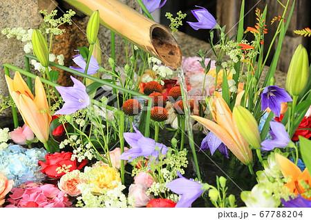 盛夏に涼しさを呼ぶ花畑のような手水舎 67788204