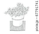 線画で描いたおしゃれなイラスト鉢植えの小さい花 67791741