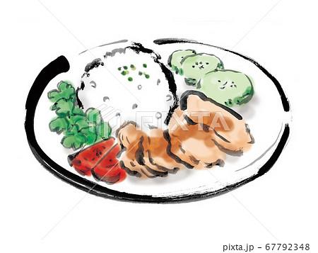 東南アジアの庶民料理の海南鶏飯の手描きイラスト 67792348