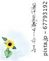 暑中お見舞い絵ハガキ水彩で描いたひまわりイラスト 67793192