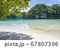 太平洋の島国、パラオ共和国 世界遺産ロックアイランドのオモカン島 海とビーチと木陰 67807396