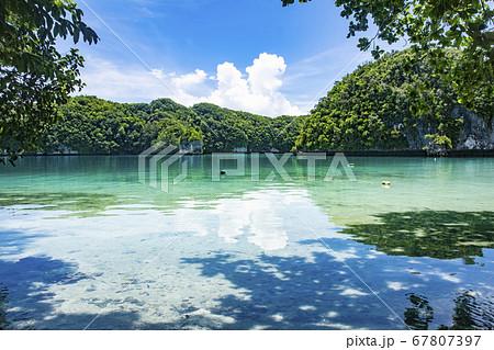 太平洋の島国、パラオ共和国 世界遺産ロックアイランドのオモカン島の海とビーチ 67807397