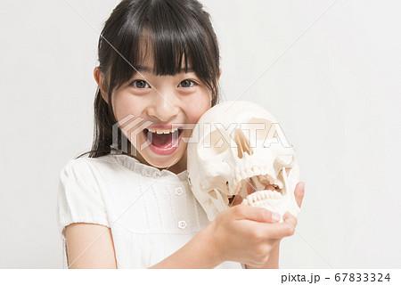 骸骨と女の子 67833324