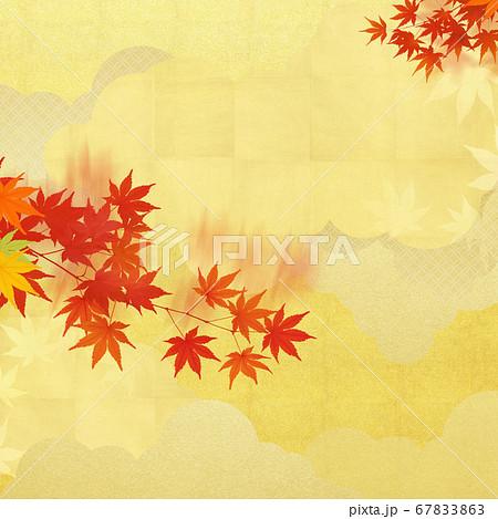 秋の紅葉と金箔の和風素材 67833863