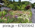 家の前で園芸を楽しむ 癒やしの散歩道 松江市  67835642