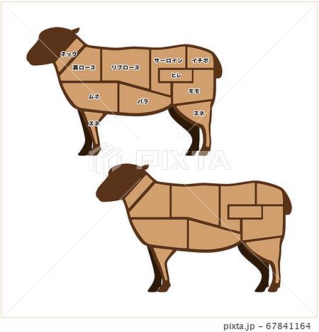 羊肉の部位 イラスト 67841164