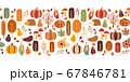 Thanksgiving seamless vector border. Seamless Autumn pattern corn tree pumpkin pear sunflower acorn 67846781