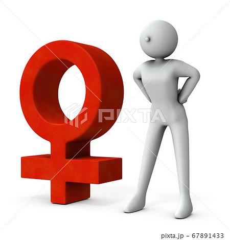 女性と女性を表す記号。3Dレンダリング。 67891433