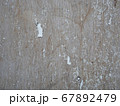 Texture of old wood wall with white aged paint 67892479
