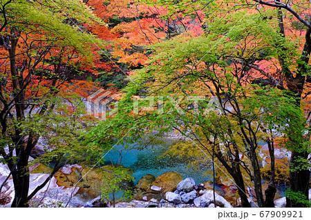 秋色の天ノ川(奈良県吉野郡天川村) 67909921