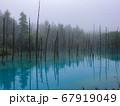 霧の青い池 67919049