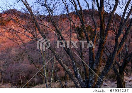 朝焼けに染まる屏風岩(奈良県宇陀郡曽爾村) 67952287