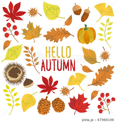 秋の紅葉イメージのイラスト素材 67968196