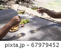 picnic with wine 67979452