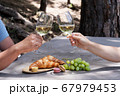 picnic with wine 67979453