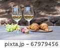 picnic with wine 67979456