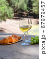 picnic with wine 67979457