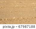 畑の土 67987188