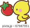 ヒヨコといちご 67987951