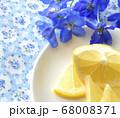 鮮やかなブルーのデルフィニウムと新鮮なレモンの果実 68008371
