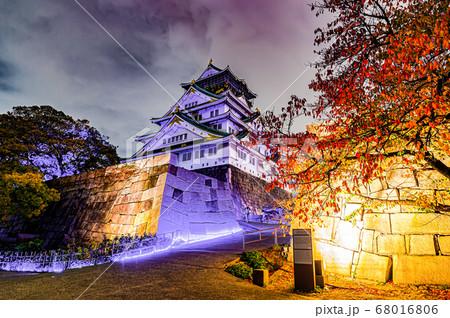 大阪城天守閣のライトアップと紅葉 68016806