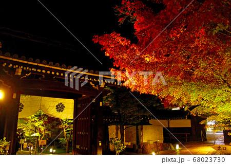 【京都】秋の永観堂禅林寺 紅葉ライトアップされた境内 68023730