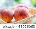 桃 物撮り 68026063