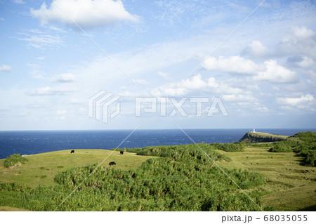 与那国島東端の東崎と水平線、青空と白い雲 68035055
