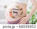 妊娠 臨月 ボディペイント 68036952