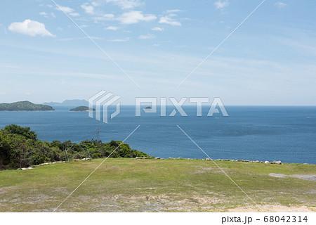 福徳稲荷神社から見える青空と海と植物 68042314