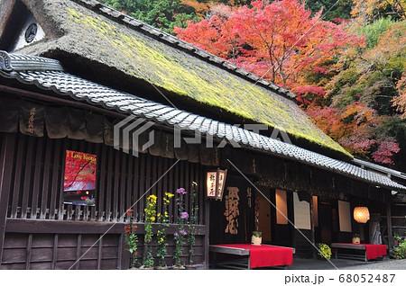 京都の町並み 鮎茶屋「平野屋」と紅葉 68052487