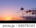 ヤシのシルエットと夕焼け(ハワイ・マジックアイランド) 68078183