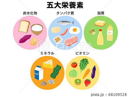 五大栄養素 炭水化物、タンパク質、脂質、ミネラル、ビタミン 68109528
