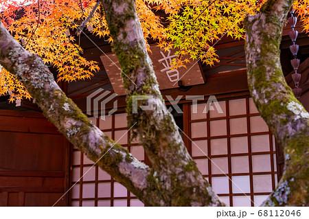 滋賀県 錦秋の永源寺の境内にあるお堂 68112046