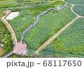 利川 風景 農園 68117650