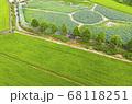 利川 農業 夏 68118251