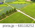 利川 稲 農業 68118252