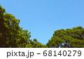 樹木と青空  68140279