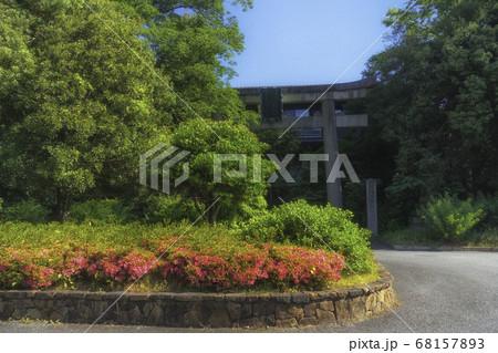 京都、梨木神社の一の鳥居と初夏の風景 68157893