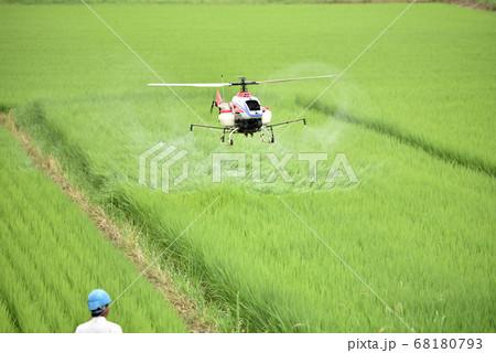 ラジコンヘリコプターによる農薬散布 68180793