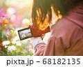 写真教室でコスモスを撮影する女性 68182135