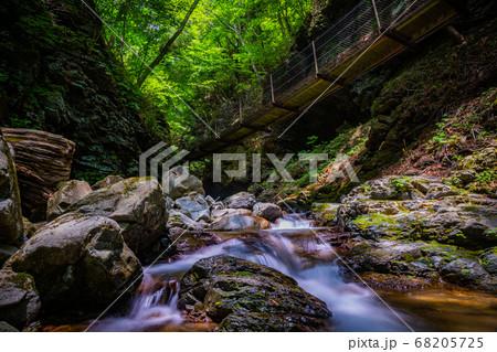 森の中の渓流 68205725