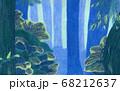 森の中 68212637